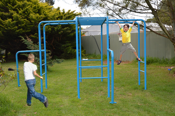 Gym Monkey Bars Playground Equipment