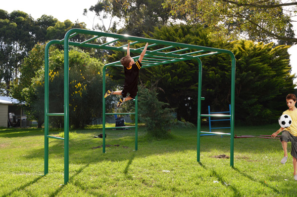 Tree Monkey Bars Playground Equipment